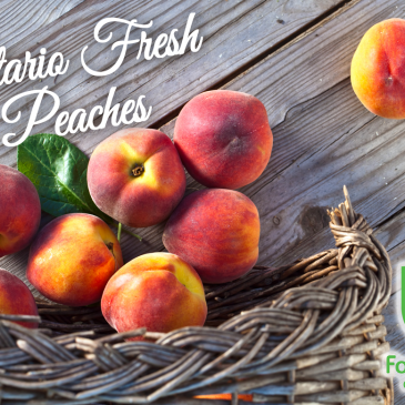 Peaches are In Season and In-Store